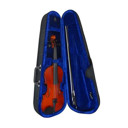 La modelos de violines de Lark, tienen como características un sonido redondo, dulce y agudo. Perfectamente definido debido a la construcción y gama de maderas utilizadas para el cuerpo, brazo, diapasón, cordal, botones y clavijas. Creado principalmente para músicos que buscan la mejor calidad por el precio, útil para principiantes, excelente para la practica tanto en salón y en vivo.