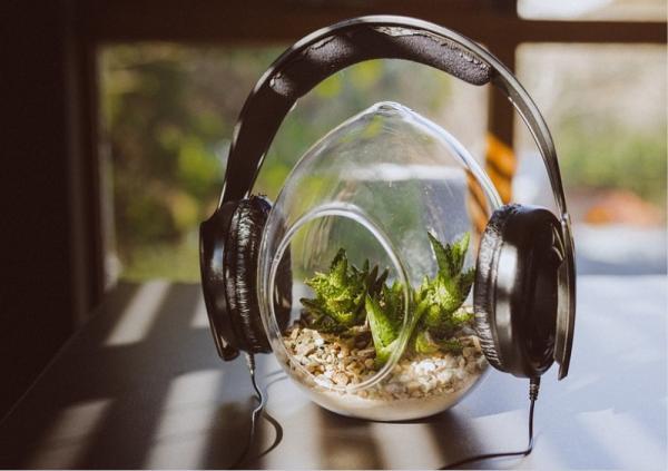 15 Curiosidades sobre la música