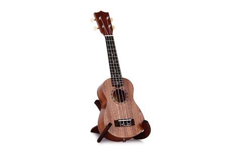 Clases de ukelele en Querétaro